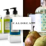 Caldrea Lighting Accessories